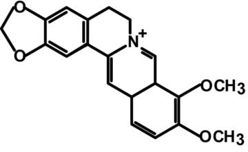 berberine compund structure and formula